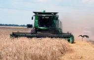 Украинские аграрии активно молотят зерно